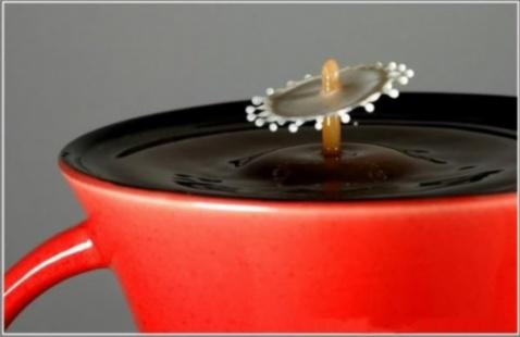 一滴牛奶跳入咖啡的瞬间 [组图] - 醉龙归舟 -