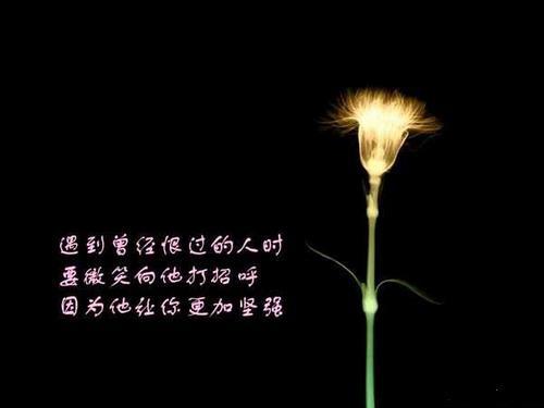 诗画;画谈人生; - dwidyhzmpy2009 - 晨席的博客