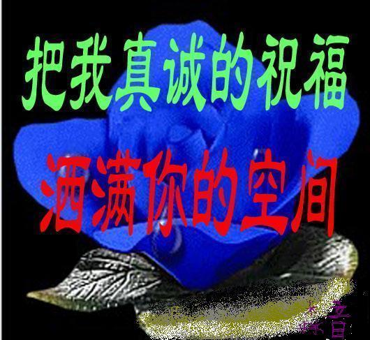 精美空间贴图 - 冬季恋歌 - 红枫叶