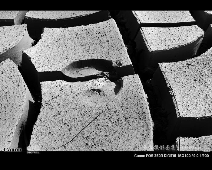 [原创] 大地的伤痕 - 子力 - 子力摄影图集