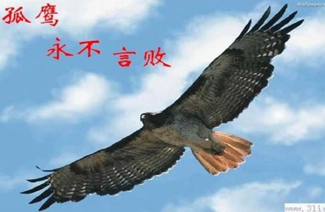 男 性 十 八 美  - chenyu6659 - chenyu6659的博客