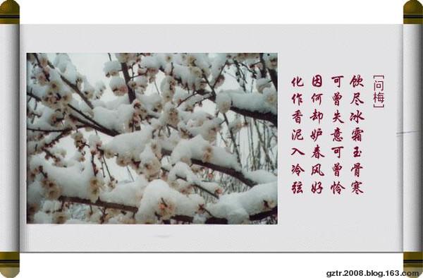 梅花八绝 - 春暖花会开 - 春暖花会开的BLOG