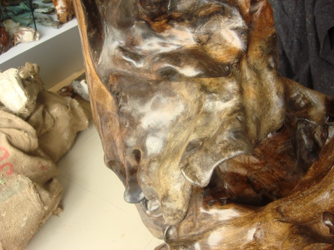 浴火凤凰--纯天然乌木艺术 - 缅甸树化王-山喜 - 山喜琦廊的博客