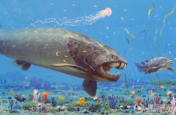 史上咬合力最大的鱼——邓氏鱼 - 逸风 - 风之幻想