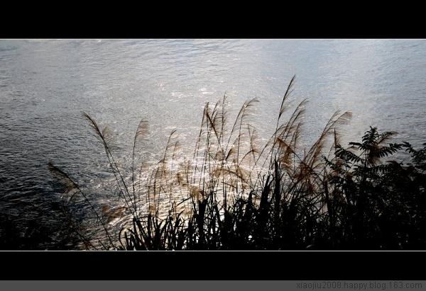 战友肖平生优秀摄影集 - 和平年代 - 和平年代