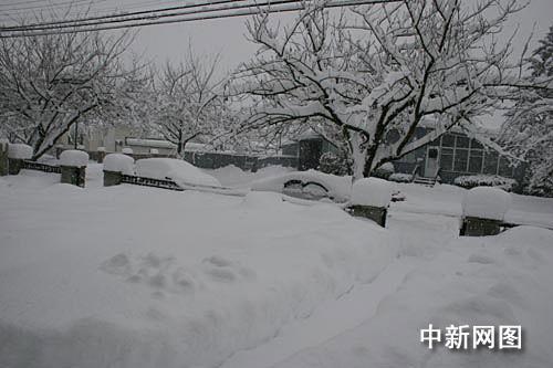 组图:冰雪天气的中国可与温哥华相媲美 - 潇彧 - 潇彧咖啡-幸福咖啡