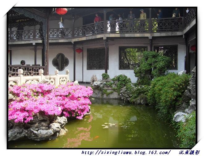 原摄清逸灵秀—扬州何园 - 沉鱼 - 沉鱼雅居