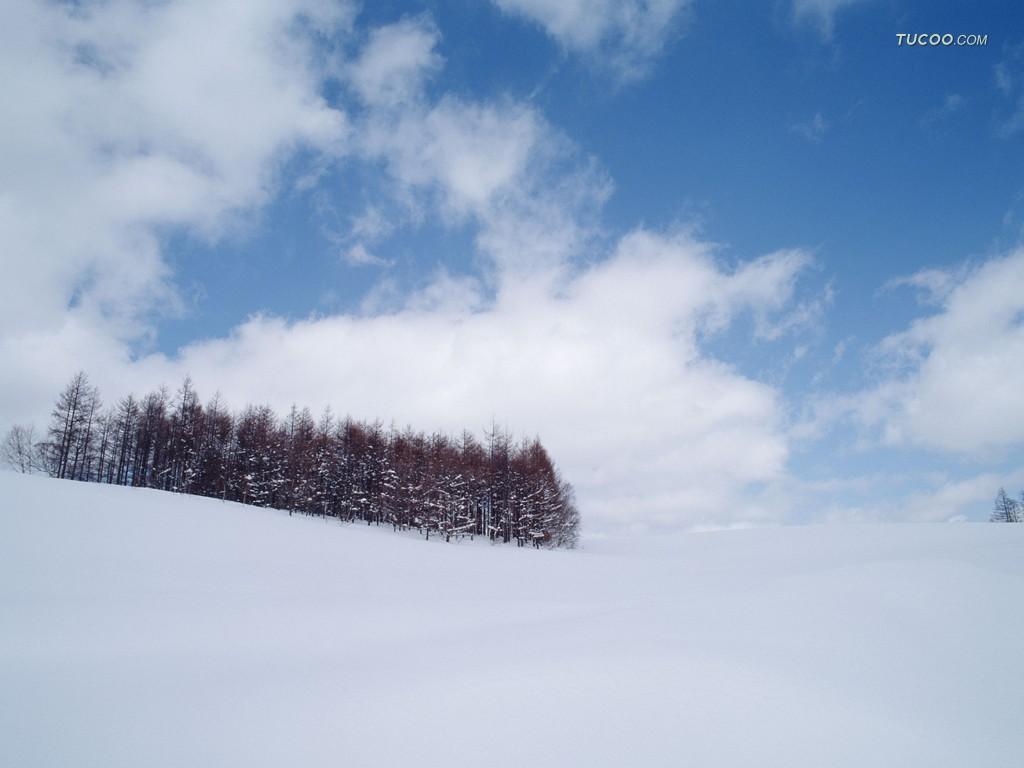 美丽的雪 - 美丽星空 - 星光灿烂
