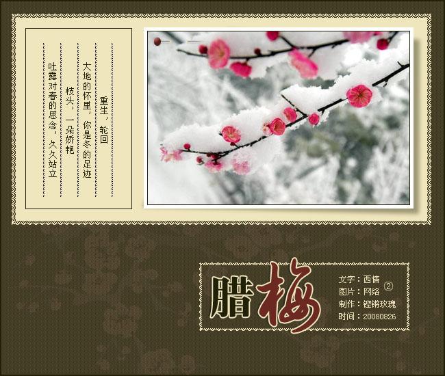 咏梅2009.3.19 - 西施綄纱 - liuhong66 的博客