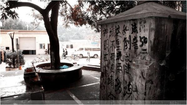 [原]深圳·湾夏村 - Tarzan - 走过大地