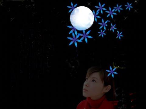 (原创)夜月的遐想 - 清雅淡然 -