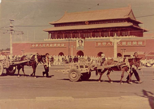 揭秘:用黄金打造天安门的秘闻 - 中华遗产 - 《中华遗产》