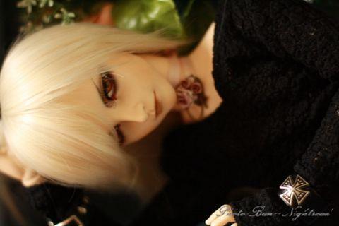 Pretty Boy - SHO - qhd1997 - 莲醉西岸 - 春 将至