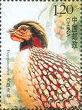 2008年新邮(一) - 自由飞翔 - 老邹的博客