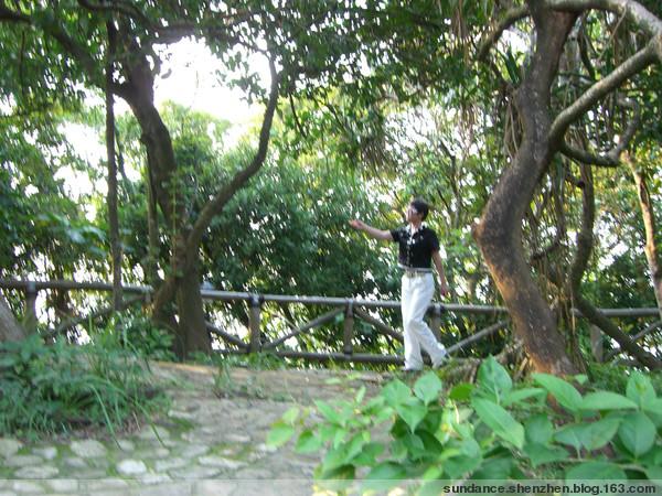 走在乡间的小路上[原创] - 太阳舞(sundance) - 太阳舞(sundance)