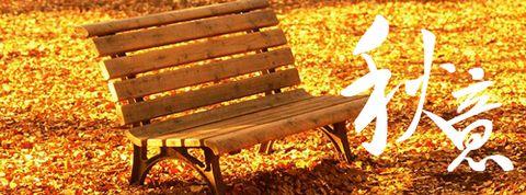 【原创】秋日私语 - a开心快乐的英子 - 开心快乐的英子欢迎您