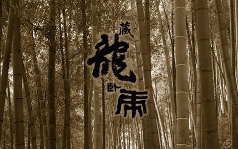 藏龙卧虎 - 风情一剑 - 風情一劍的靜思世界