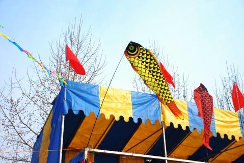 2009年1月28日 - 馨香盈袖 - 記 日