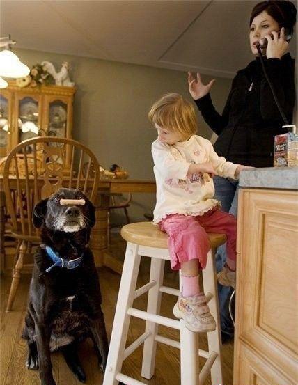 社区_网易社区_世上最小的人儿 拇指姑娘身高27英寸 - . - .