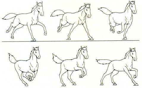 背面走路動畫分解圖; 肢體運動分析