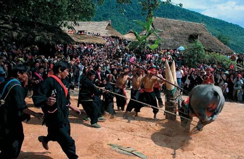 云南佤族剽牛祭木鼓(节选) - 中华遗产 - 《中华遗产》