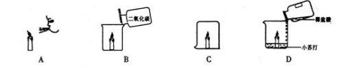 2009年11月27日 - 悟教 - 悟教化学园