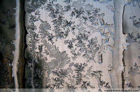 窗    花(原创散文) - 雪野木屋 - 雪野木屋的博客