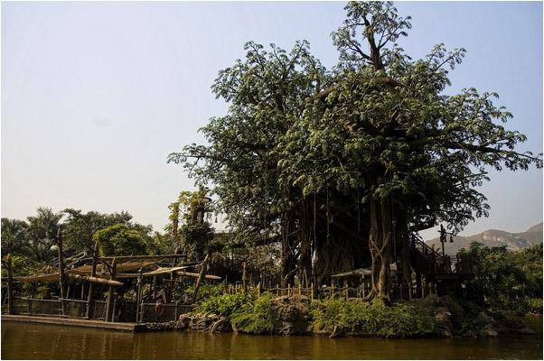 [原]香港第二天·迪斯尼公园 - Tarzan - 走过大地