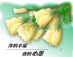 迎春 - 一叶知秋 - mahuban的博客