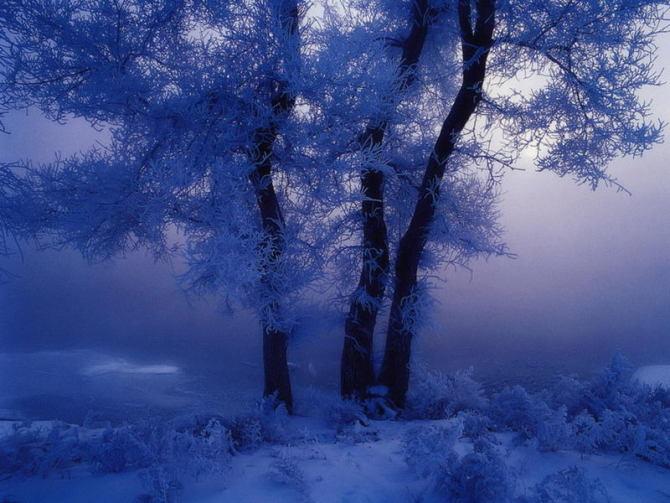 解读人生 - 冬雪春雨 - 冬雪春雨