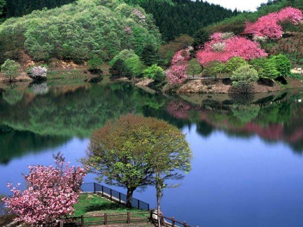 《美丽山水风景》 - 快乐每一天 - .