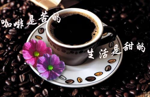 爱上咖啡 爱上简单生活 - ketty - ketty   blog
