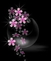 黑色漂亮背景 - 天爱 - 心灵舞台