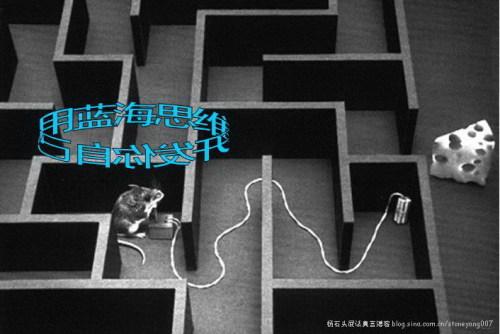 杨石头小庙念经4:用蓝海思维开发你自己 - 杨石头 - 杨石头网易分舵