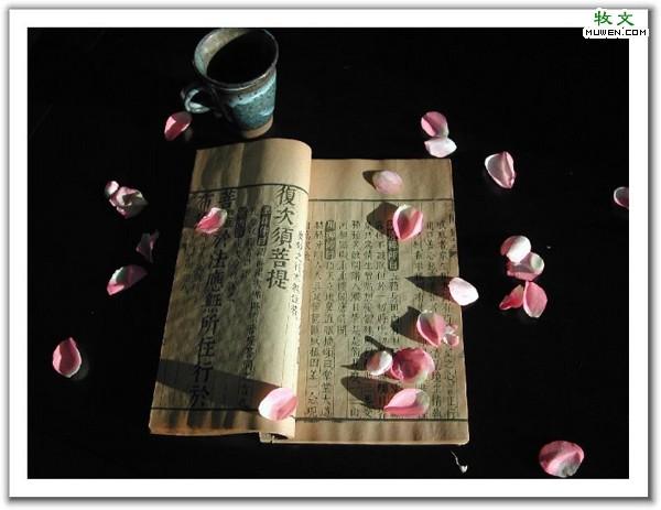 大乘妙法莲华经(净台法师)51──60集 - 春兰之馨香 - 香光庄严卍念佛三昧