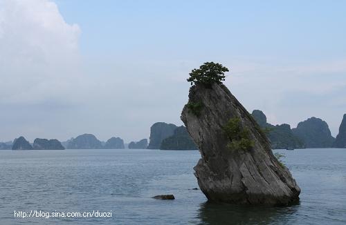 【越南】漂在下龙湾 - yi78 - 玫瑰上的雪的博客