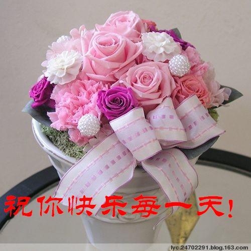 2009年4月21日 - 华山梅 - 华山梅欢迎您