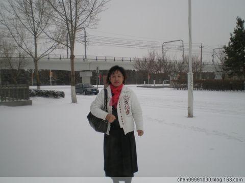 2009年春日的雪【原创】编辑中…… - 沉醉 - 沉醉的博客