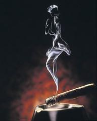 我的情人结 - 巴山雨夜-雪茄客 - 巴山雨夜-雪茄客