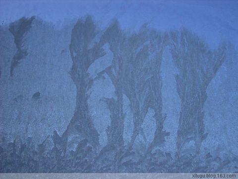 玻璃上的自然雕塑(窗花) - 天王星 -           .