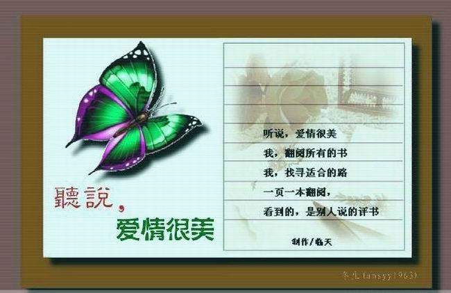 2009年1月13日 - 生如夏花 - 生如夏花