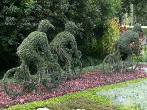 园丁的艺术 - 勇敢丽人 - 美丽人生,温馨家园!!