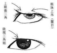 覆灯火白话译文 - 阳光 - 文化的博客