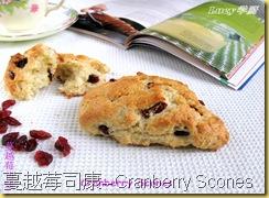 蔓越莓司康--Cranberry Scones