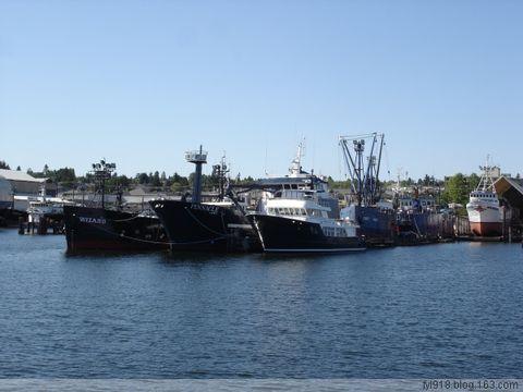到西雅图观光(19):水域中的船只 - 阳光月光 - 阳光月光