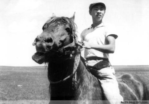 北大荒点滴之十五——驯马 - 海哥 - 海哥的博客