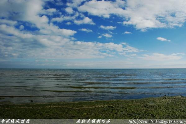 """[原创.摄影] 青藏线(六十七)青海湖畔""""5""""11P  - 扁脑壳 - 感悟人生"""