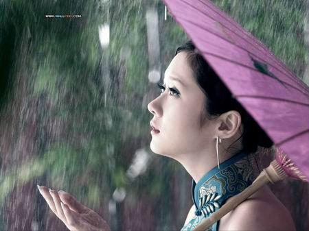 《雨忆兰萍诗集》——木棉花开的春天 - 雨忆兰萍 - 网易雨忆兰萍的博客