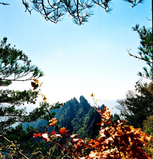秀美的西峡,我的家 - 踏雪寻梅 - 李新月3186的博客