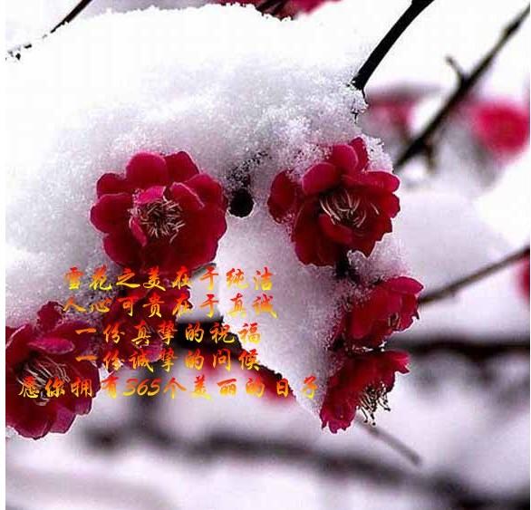 送朋友 - 香山红叶 - 香山红叶